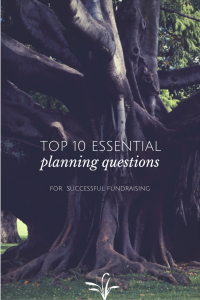 Top 10 Fundraising Planning Questions